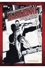 DAREDEVIL: BORN AGAIN ARTISAN EDITION TP