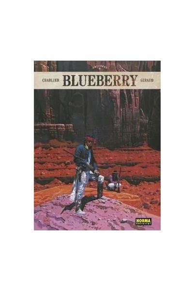 BLUEBERRY INTEGRAL 06