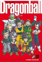 DRAGON BALL 29 DE 34