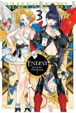 ENDEVI 03