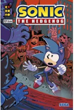 copy of SONIC THE HEDGEHOG 16