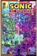SONIC THE HEDGEHOG 24