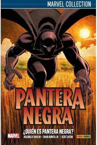 PANTERA NEGRA 01: ¿QUIÉN ES PANTERA NEGRA?